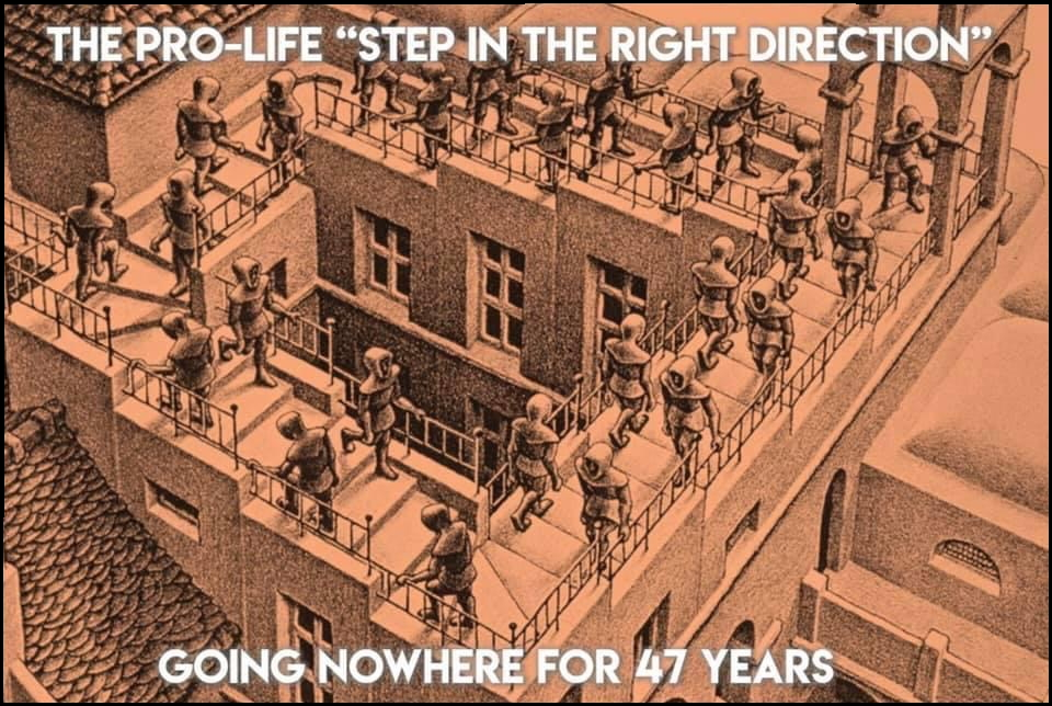 """Pro-life """"step in the right direction"""" gets you nowhere"""